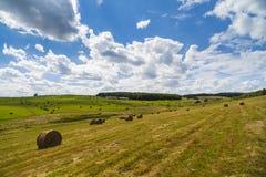 Una vista del paesaggio del raccolto in Rolling Hills in Romania con rotondo Fotografia Stock