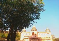 Una vista del palacio viejo con un árbol grande en el primero plano foto de archivo
