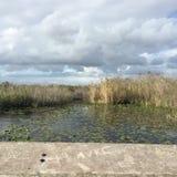 Una vista del parco nazionale dei terreni paludosi delle paludi fotografia stock
