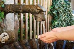 Una vista del primo piano di una fontana bronzea con acqua corrente in Salzb immagini stock libere da diritti