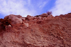 Una vista del suelo, de las rocas y de las raíces bajo beauti Imagen de archivo libre de regalías