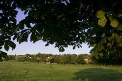 Una vista del terreno comunale ad ovest, Lincoln, Lincolnshire, Regno Unito Fotografia Stock