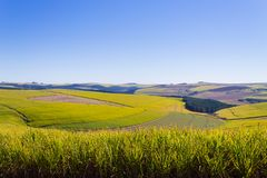 Una vista del valle de mil colinas cerca de Durban, Afri del sur fotografía de archivo