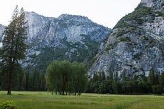 Una vista del Yosemite majestuoso imagenes de archivo