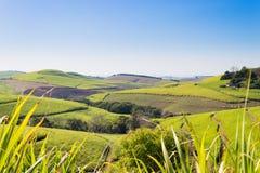 Una vista della valle di mille colline vicino a Durban, Afri del sud immagini stock