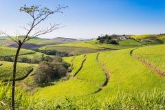 Una vista della valle di mille colline vicino a Durban, Afri del sud fotografie stock libere da diritti