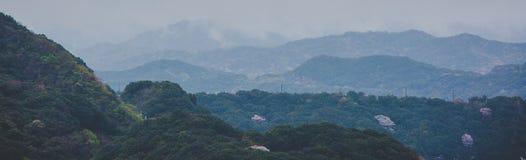 Una vista delle isole nebbiose, nelle prime ore del mattino Immagini Stock Libere da Diritti