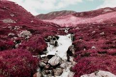 Una vista di bei paesaggio e montagne in alpi Svizzera a colori l'infrarosso Fotografie Stock Libere da Diritti