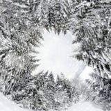 una vista di 360 gradi di bello paesaggio di inverno Immagini Stock Libere da Diritti