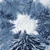 una vista di 360 gradi del paesaggio di inverno Fotografie Stock