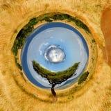 una vista di 360 gradi di paesaggio con l'albero in Africa Immagini Stock Libere da Diritti