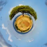 una vista di 360 gradi di paesaggio con l'albero in Africa Immagini Stock