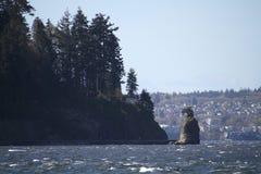 Una vista di Stanley Park e della roccia di Siwash fotografia stock libera da diritti