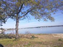 Una vista graziosa 2 del fiume Fotografia Stock