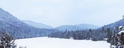 Lago congelato durante l'inverno Immagine Stock