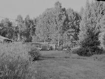 Una vista pensiamo abbastanza comune nel lato del paese in Finlandia Fotografie Stock