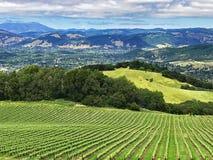 Una vista sopra le colline e le vigne della contea di Sonoma, California fotografia stock
