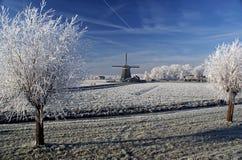 Una vista stunning di nebbia congelata sul mulino a vento e sull'albero Fotografie Stock Libere da Diritti
