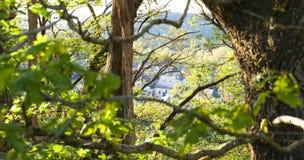 Una vista sul villaggio del San-Léonard-DES-Boisin paga il de la Loira, Francia, con i rami sulla priorità alta Immagine Stock