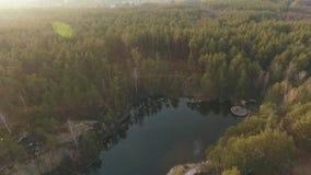Una vista superior de un lago en el medio del tiroteo del bosque del abejón almacen de metraje de vídeo