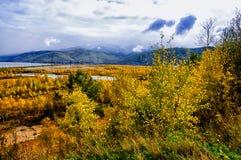 Una vista superiore degli alberi forestali colourful ed il lago in autunno condiscono Scena dal lago Baikal, Russia Immagine Stock