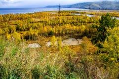 Una vista superiore degli alberi forestali colourful ed il lago in autunno condiscono Scena dal lago Baikal, Russia Fotografia Stock Libera da Diritti