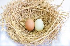 Una vista superiore di due uova Fotografie Stock