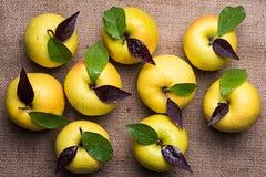 Una vista superiore di nove mele gialle con le gocce di acqua e delle foglie su Br Immagini Stock