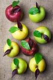 Una vista superiore di otto mele variopinte con le gocce di acqua e le foglie sopra Immagini Stock