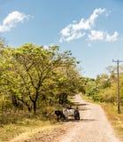 Una vista tipica in Ometepe nel Nicaragua fotografie stock