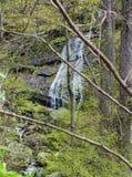 Una vista vertical de una cascada de la montaña - 2 imagen de archivo libre de regalías