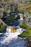 Una vista vicina delle cadute della neve, una cascata vicino a Ingleton nelle vallate di Yorkshire immagine stock libera da diritti