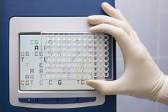 una zolla dei 96 pozzi in mano dello scienziato Fotografie Stock