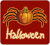 Una zucca di Halloween con i piedini del ragno Fotografia Stock