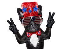 Unabhängigkeitstag 4. von Juli-Hund Stockbilder