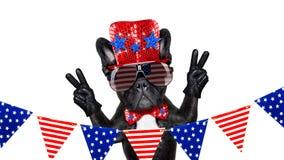 Unabhängigkeitstag 4. von Juli-Hund Stockbild