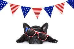 Unabhängigkeitstag 4. von Juli-Hund Stockfoto