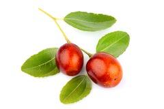 Unabi frutifica o Ziziphus, jujuba com as folhas isoladas foto de stock
