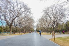 Unacquainted Chinese mensen of touristin die in Tempel van Hemelpark of Tiantan in Chinese Naam in de stad van Peking lopen royalty-vrije stock afbeeldingen