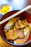 Unagi Royalty Free Stock Images