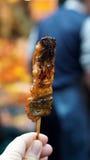 Unagi, Japanese roasted fresh water eel with brown sauce on skrewer royalty free stock image