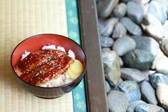 Unagi rice Royaltyfri Fotografi