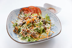 Unagi Salad include Unagi, Tomato, Cucumber, Carrot and Green Salad Leaves that Topping with Mayonnaise and Ebiko Royalty Free Stock Images