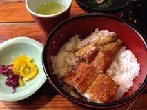 Unagi top with rice Stock Images