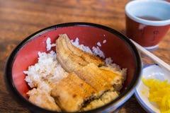 Unaju, arroz com os peixes do sneck da grade de japão Fotos de Stock