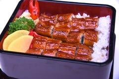 Unaju, Unagi don ou grelhou a enguia no arroz, culinária japonesa Clos Imagens de Stock Royalty Free