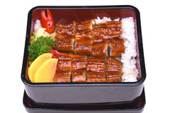 Unaju, Unagi ziehen an oder grillten Aal auf dem Reis, lokalisiert auf weißem BAC Lizenzfreie Stockfotografie