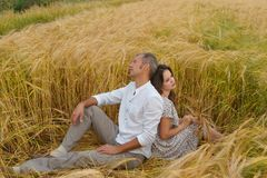Unappy love couple sitting on the grass in a wheat field. Man and woman quarreled. royalty free stock photos