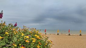 Empty Beach on cloudy day at Sea. Unattended coastline situated with chairs and umbrellas go unattended on an overcast summer day royalty free stock photo