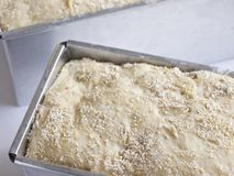 Unbaked olive bread Royalty Free Stock Photos